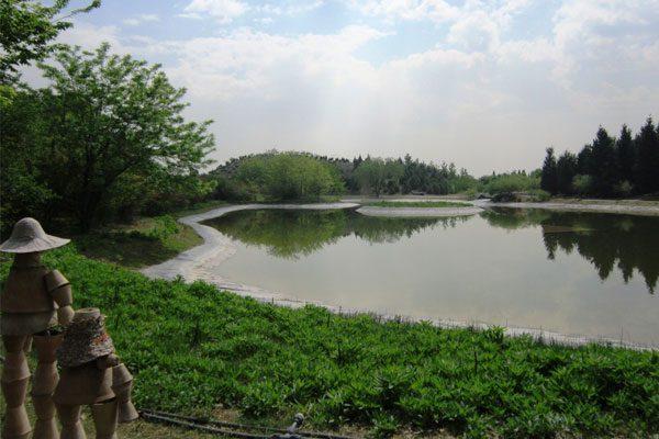بازديد هيئت ژاپني از موسسه و باغ گياهشناسي ملي ايران